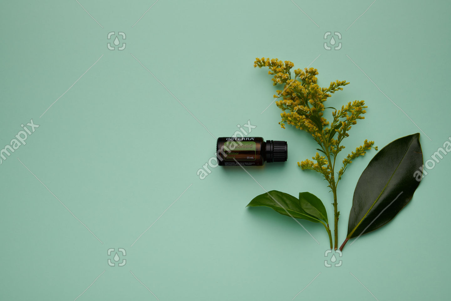 doTERRA TerraShield with flowers and leaves on green