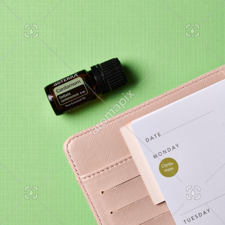 doTERRA Cardamom and pink diary on green