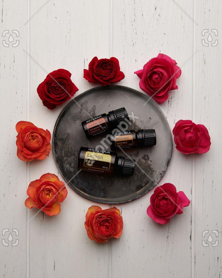doTERRA Cinnamon Bark, Motivate and Lemon with roses on white