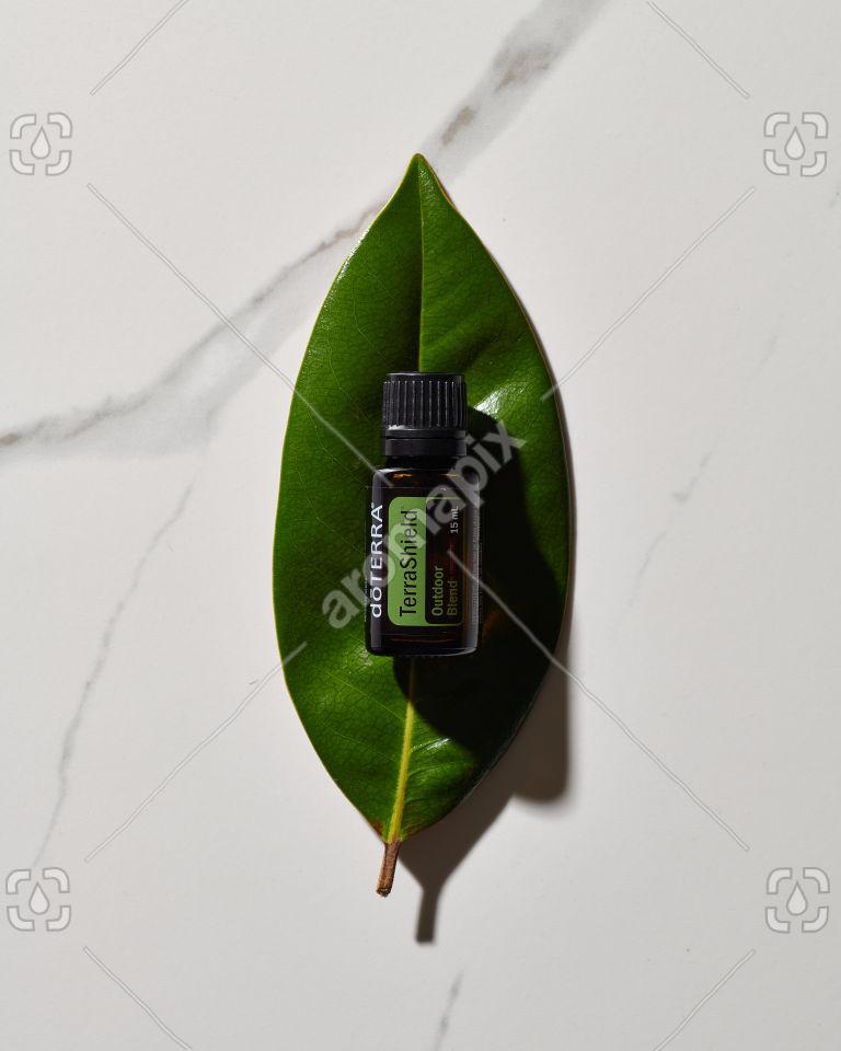 doTERRA TerraShield essential oil blend on a leaf in sunlight