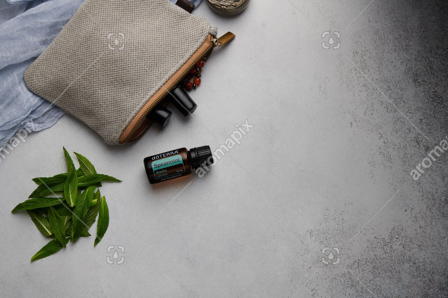 doTERRA Spearmint with mint leaves on white