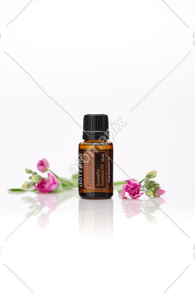 doTERRA Frankincense with flowers on white