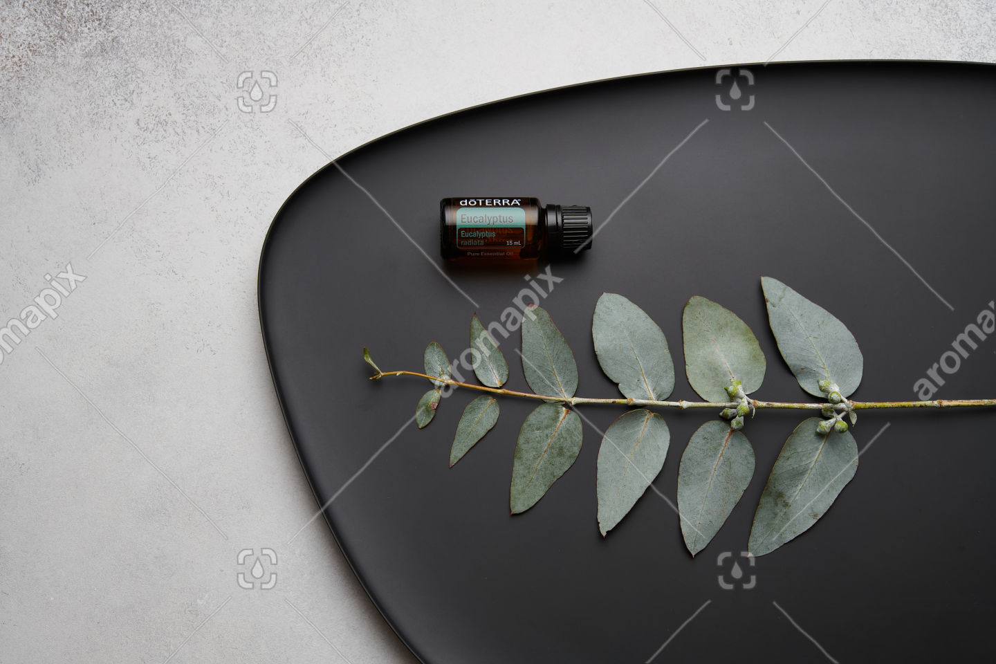 doTERRA Eucalyptus and eucalyptus leaves on black plate
