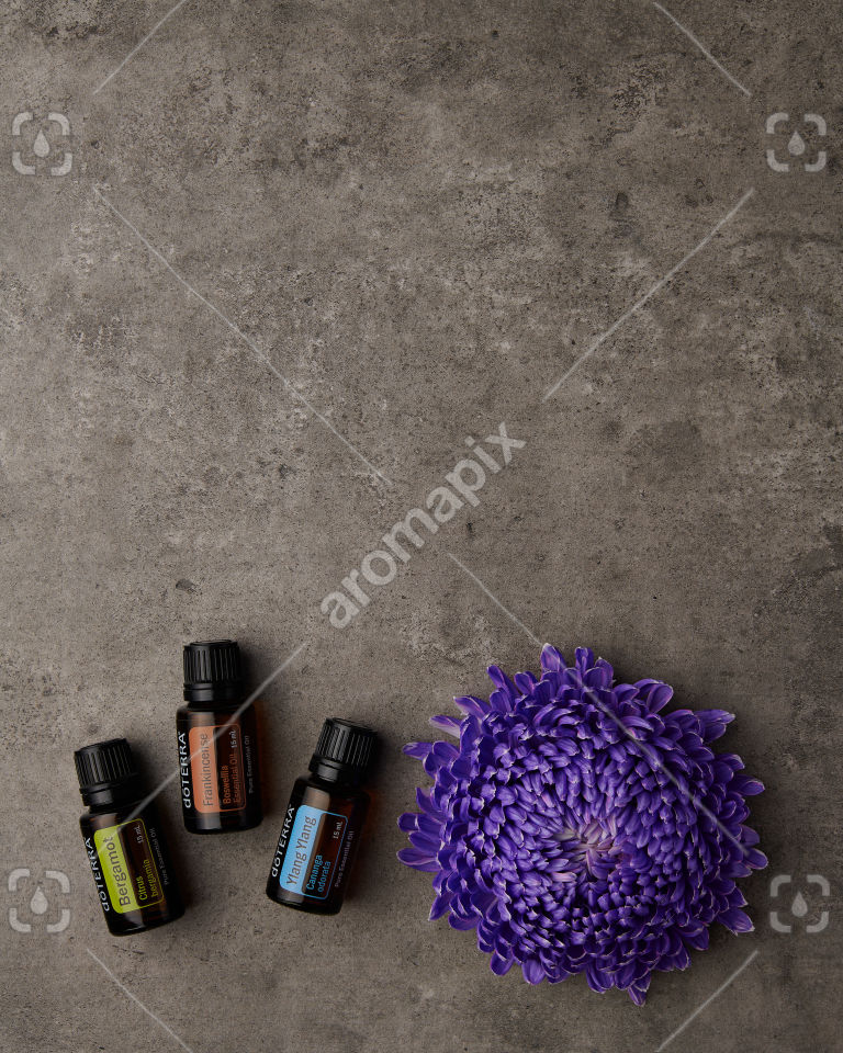 doTERRA Bergamot, Frankincense and Ylang Ylang with a purple flower on gray