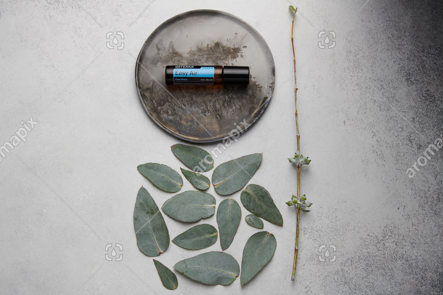 doTERRA Easy Air Touch and eucalyptus leaves on white concrete