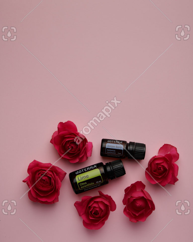 doTERRA Lime and Juniper Berry with roses on pink