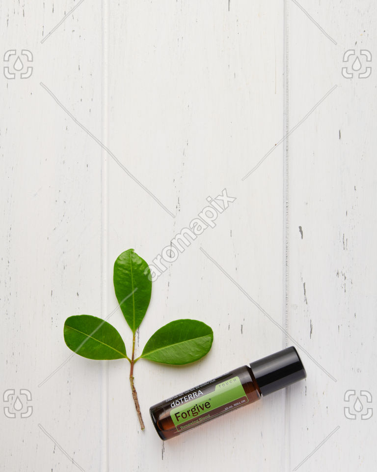 doTERRA Forgive Touch with leaves on white