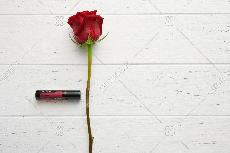 doTERRA Rose with rose stem on white
