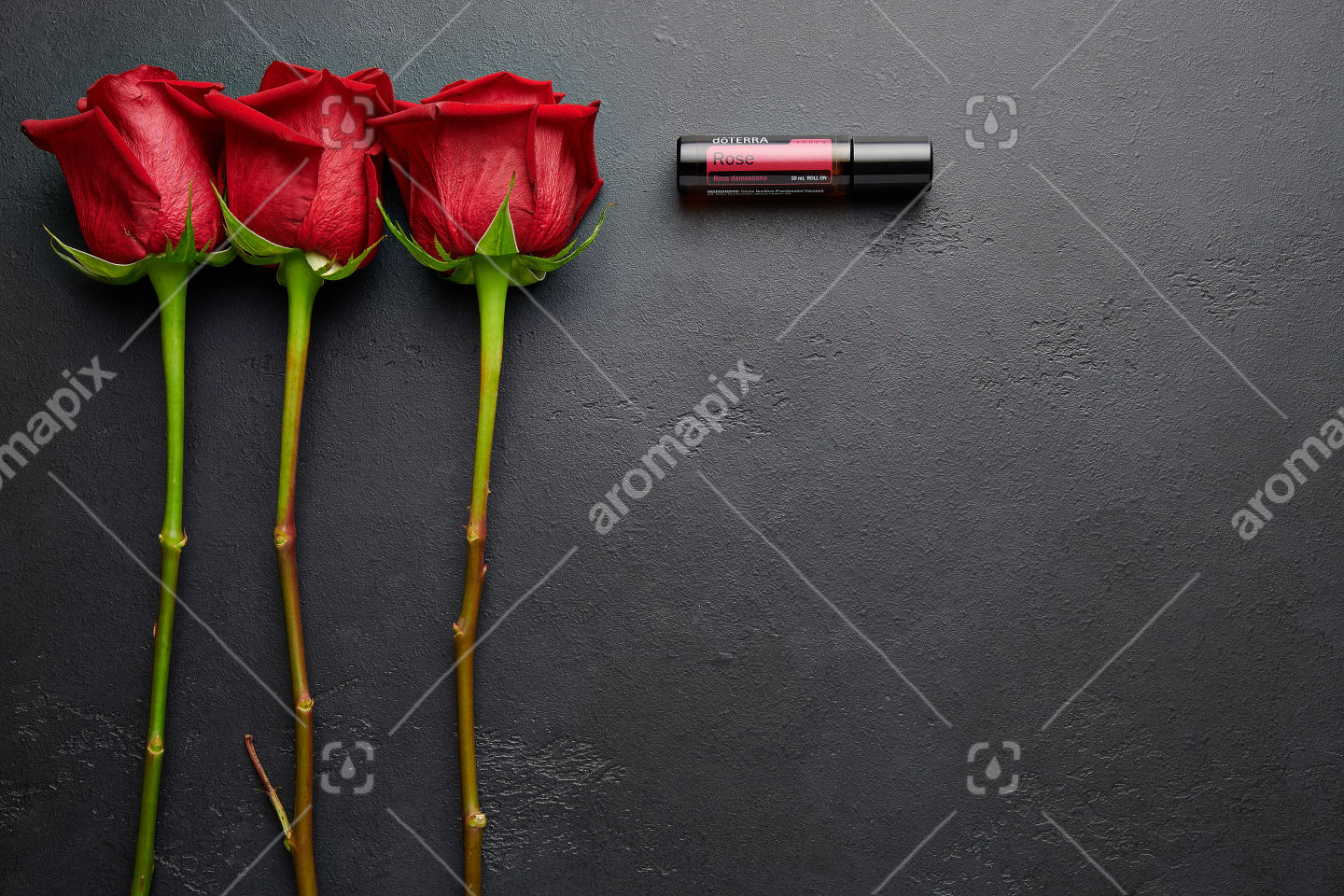 doTERRA Rose with rose stems on black