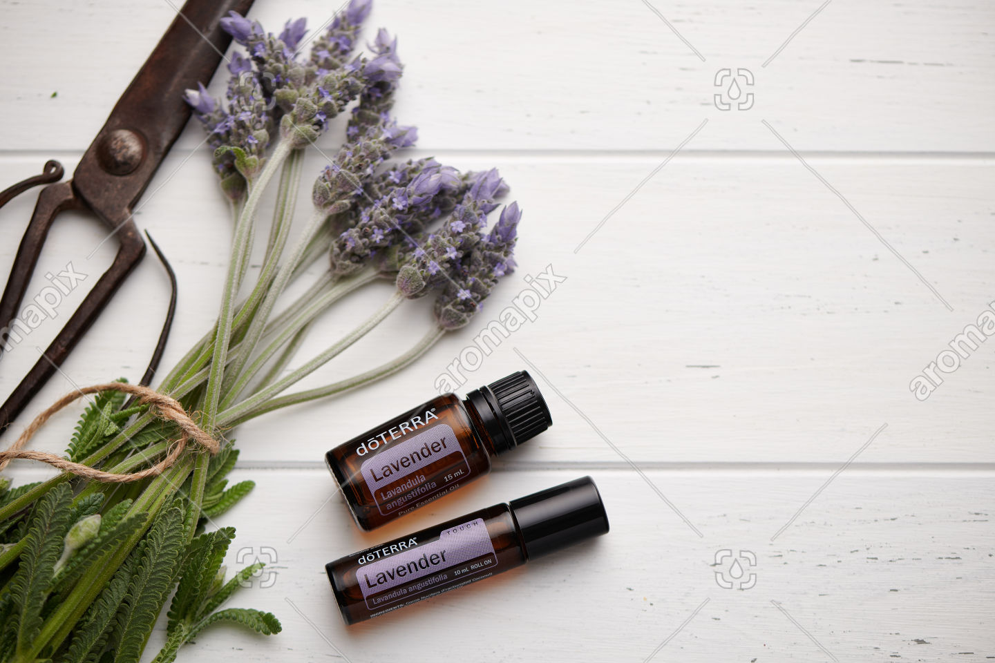doTERRA Lavender, Lavender Touch and lavender flowers on white wooden background