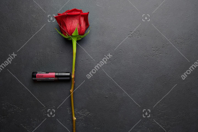doTERRA Rose with rose stem on black