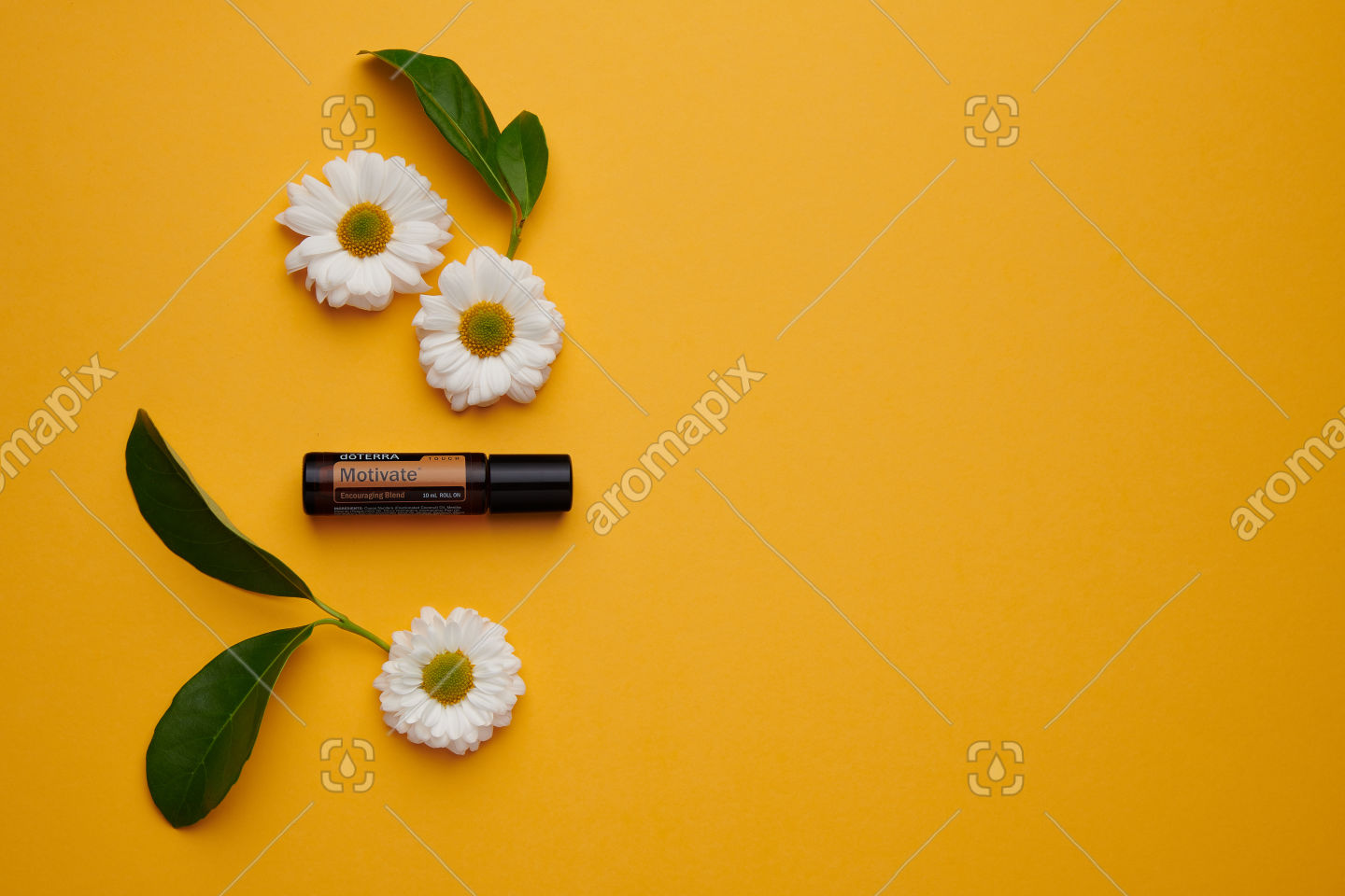 doTERRA Motivate Touch with flowers and leaves on orange