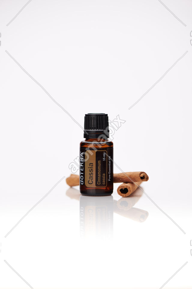 doTERRA Cassia with cassia on white