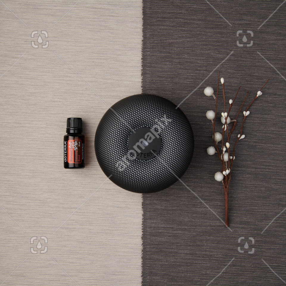 doTERRA Holiday Joy and Brevi Walnut Diffuser on a textured background.