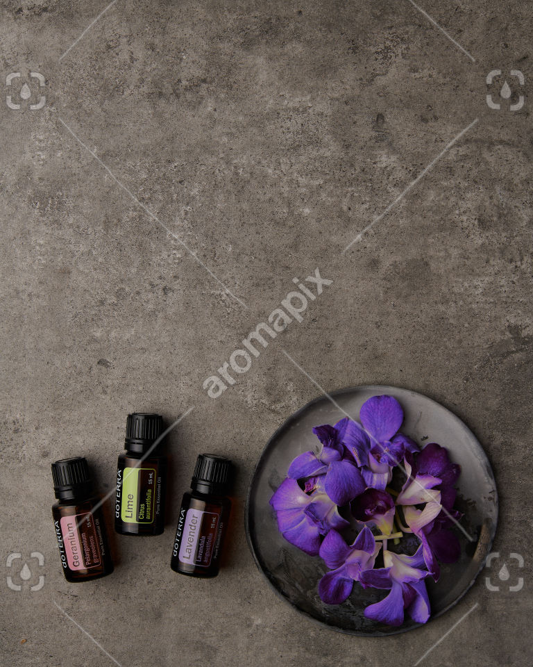 doTERRA Geranium, Lime and Lavender with purple flowers on gray