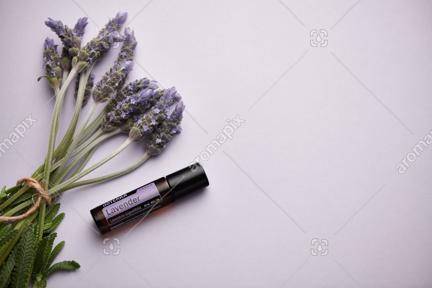 doTERRA Lavender Touch and lavender flowers on light purple card stock