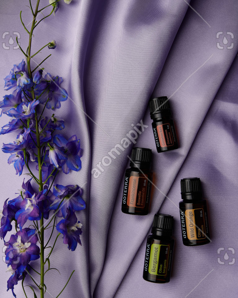 doTERRA Frankincense, Cinnamon Bark, Bergamot and Wild Orange on purple
