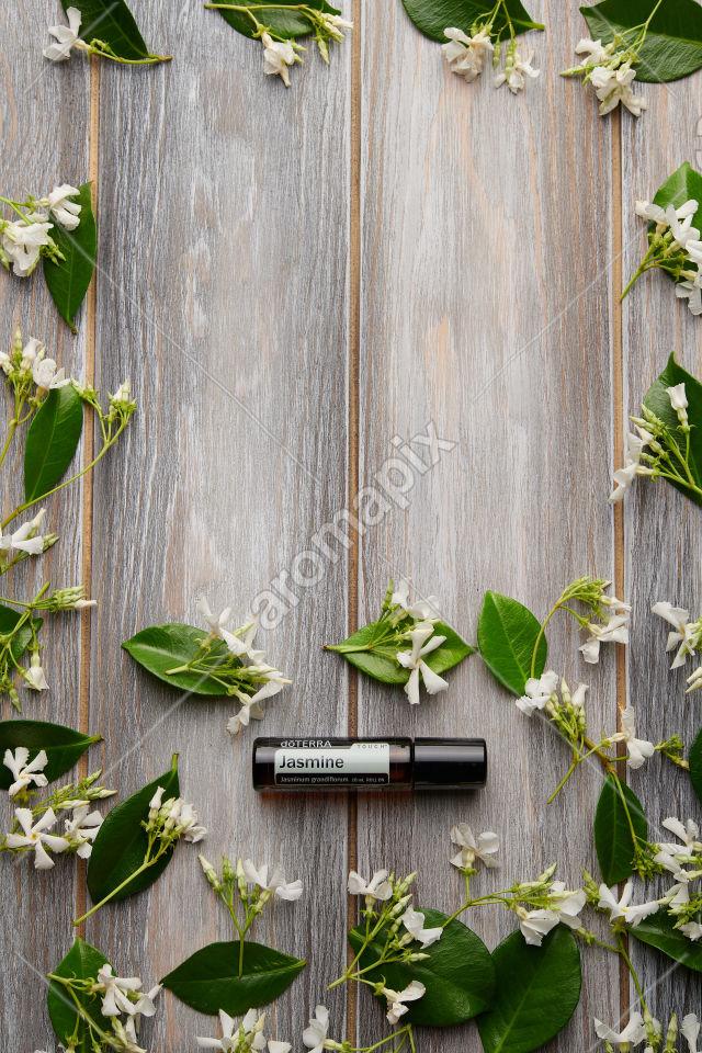 doTERRA Jasmine Touch with jasmine on wood