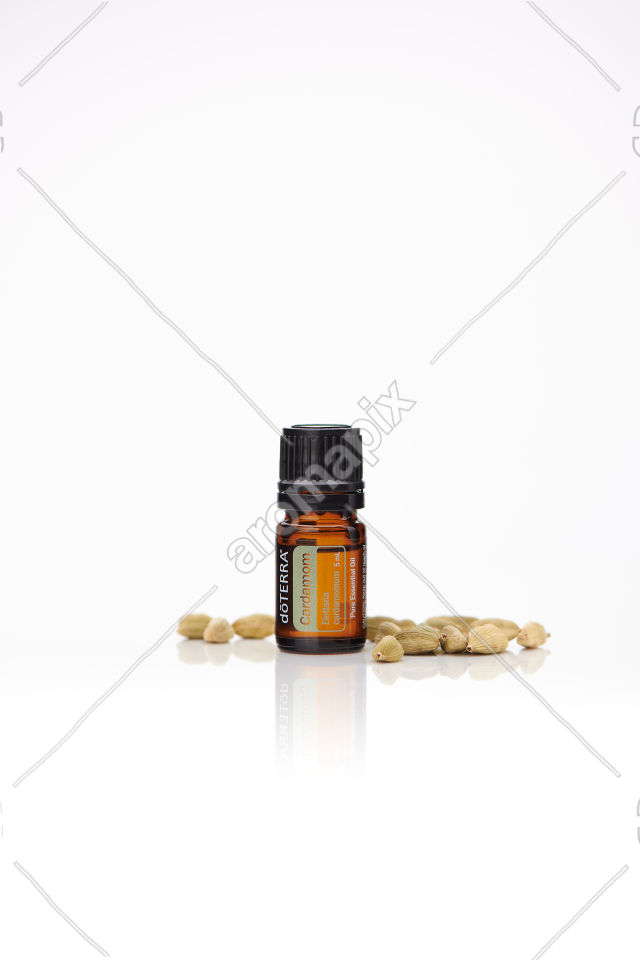 doTERRA Cardamom with pods on white