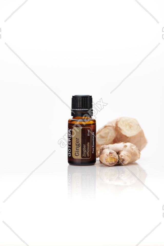 doTERRA Ginger with ginger root on white