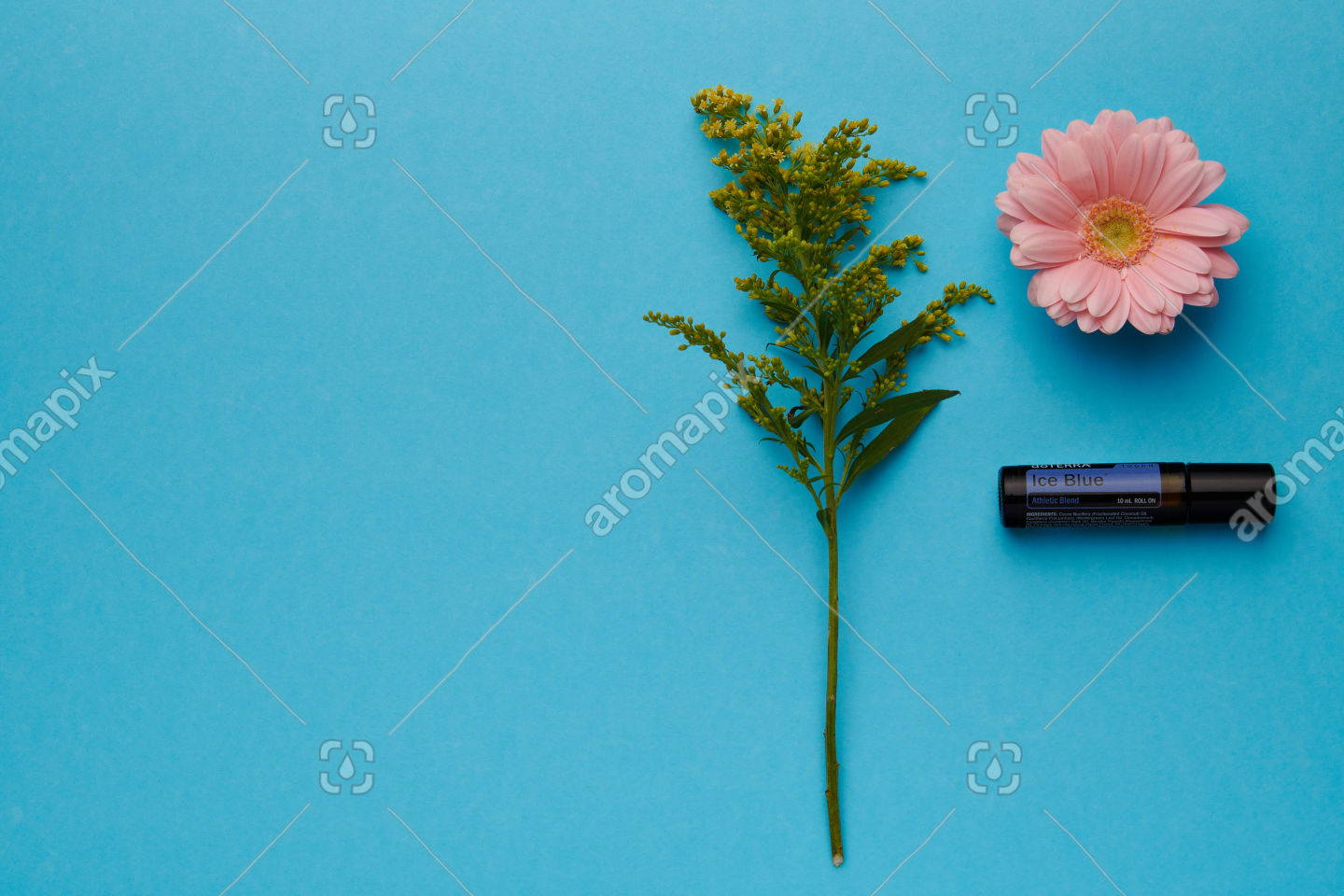 doTERRA Ice Blue Touch with flowers on blue