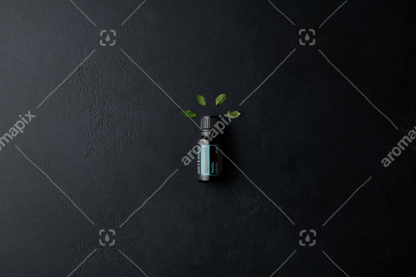 doTERRA Spearmint with mint leaves on black