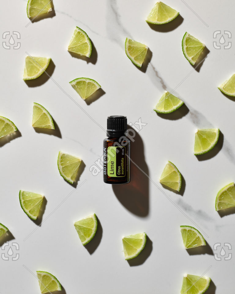doTERRA Lime essential oil and lime slices on white