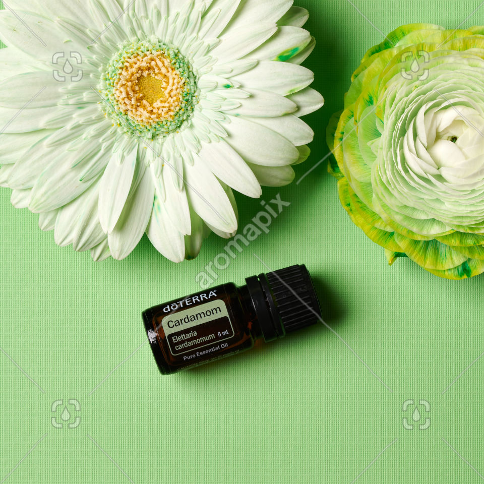 doTERRA Cardamom and flowers on green