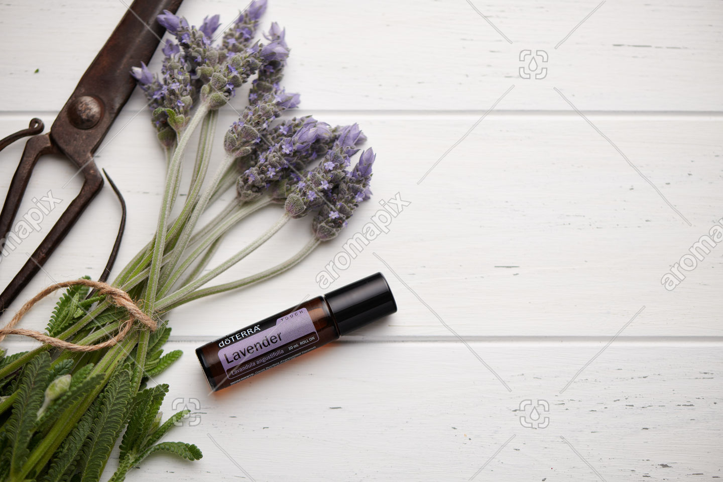 doTERRA Lavender Touch and lavender flowers on white wooden background