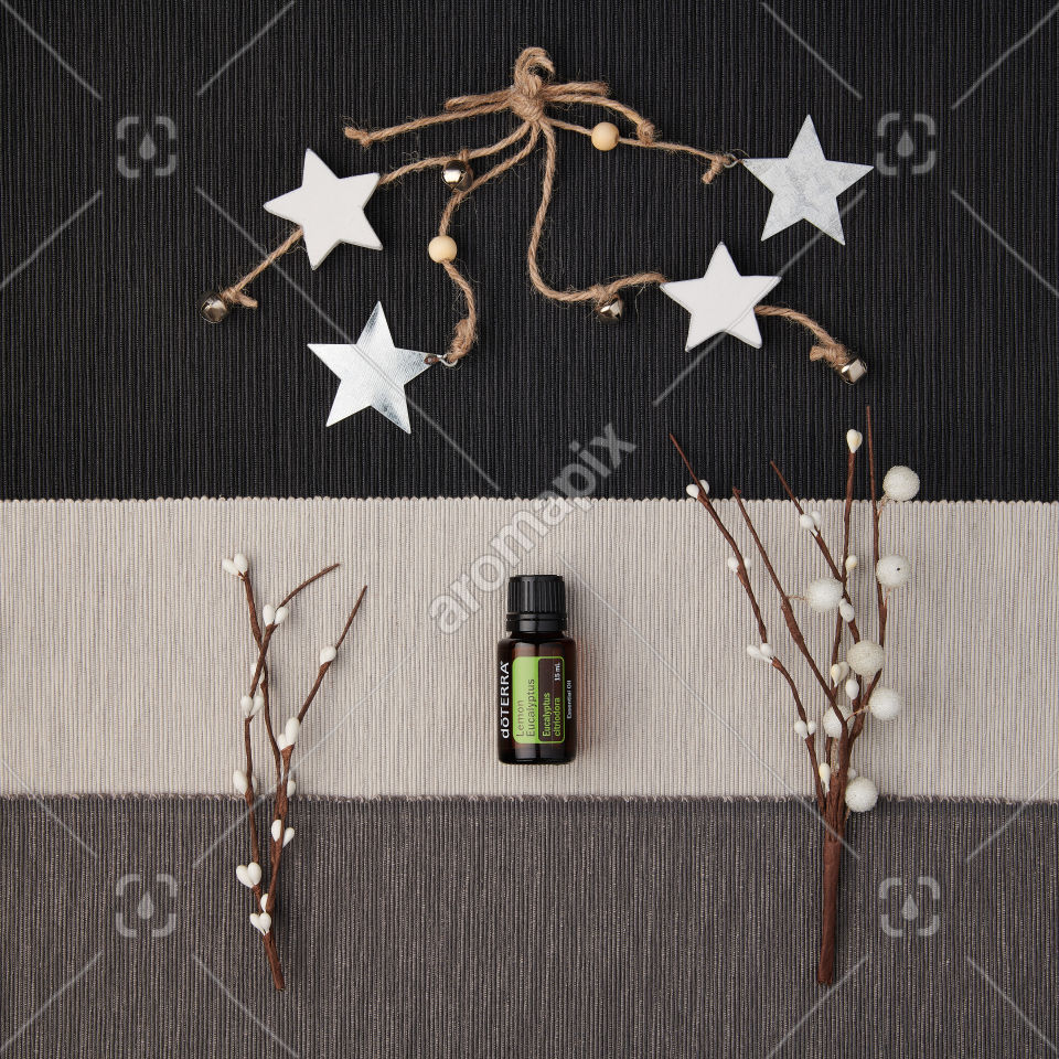 doTERRA Lemon Eucalyptus with holiday decorations on a textured background.