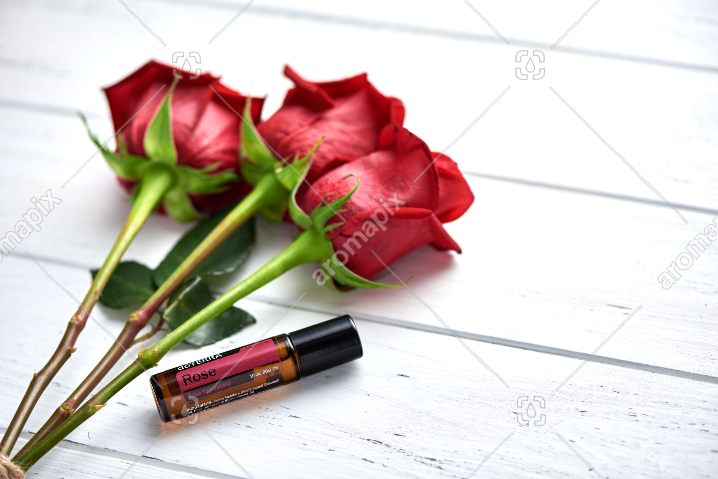 doTERRA Rose with roses on white