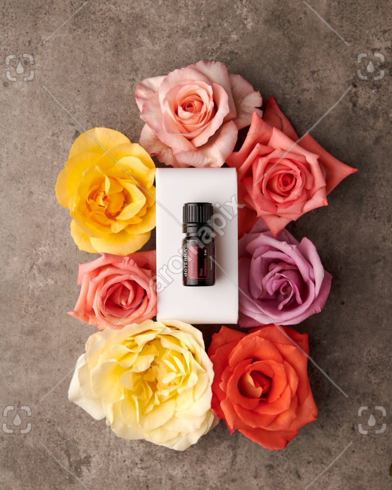 doTERRA Rose essential oil with coloured roses on gray