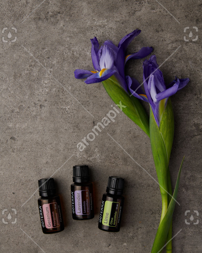 doTERRA Geranium, Lavender and Lime with purple flowers on gray