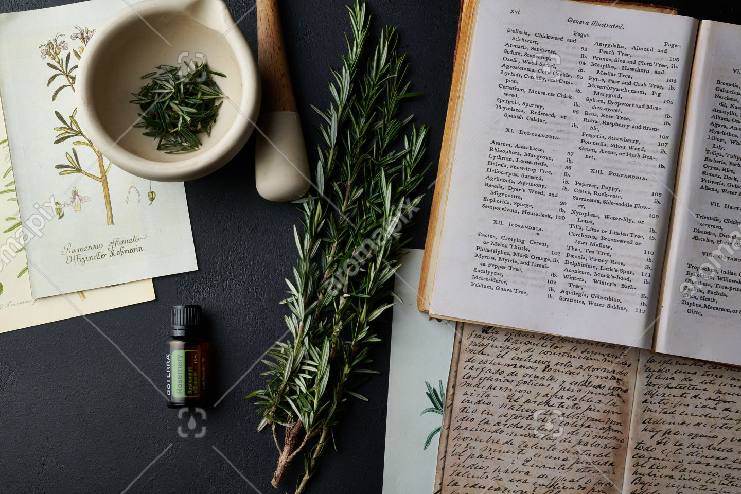 doTERRA Rosemary with books and rosemary branch on black