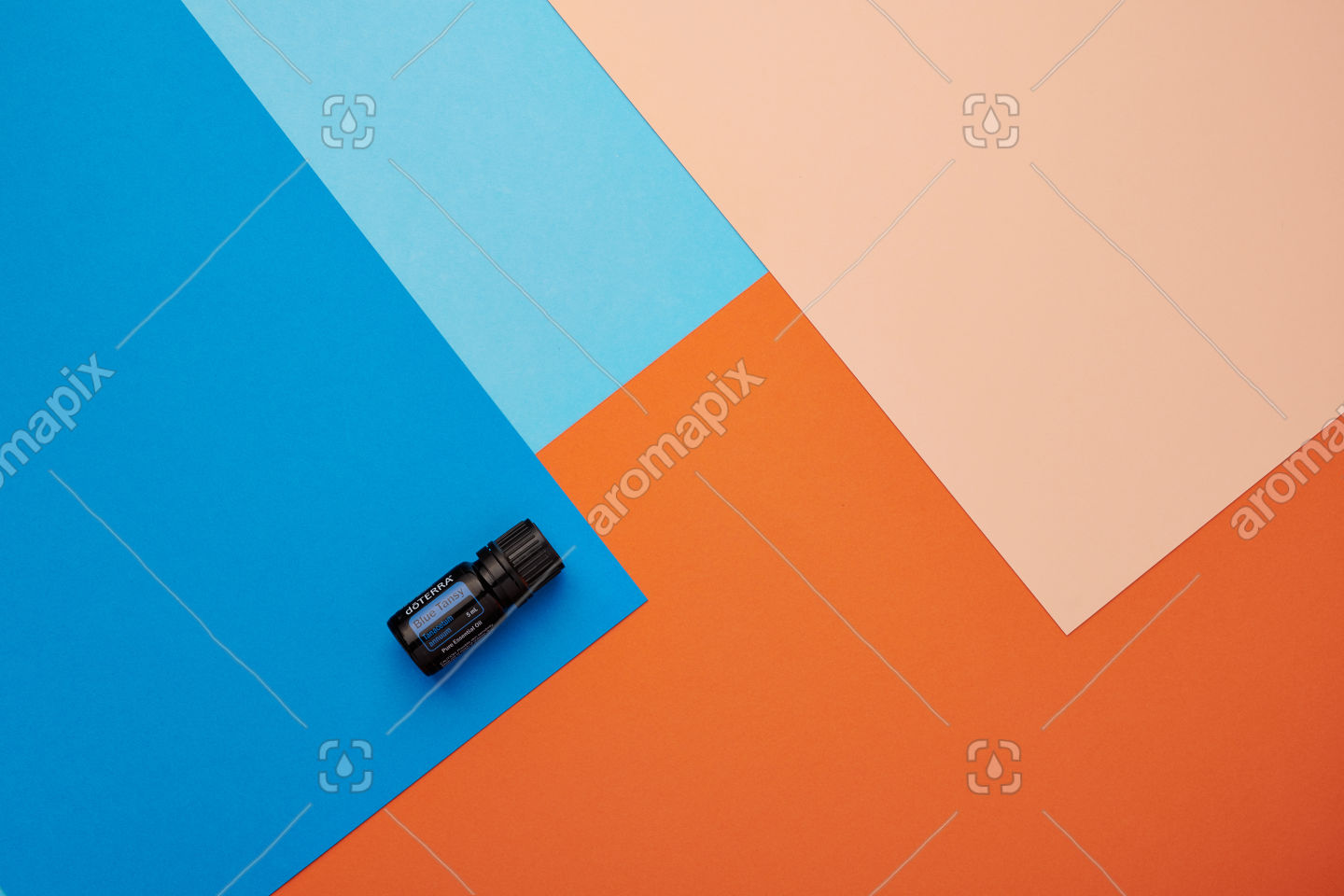 doTERRA Blue Tansy on a blue and orange background