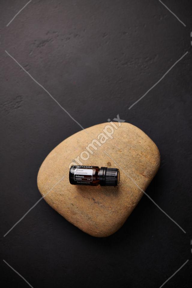 doTERRA Roman Chamomile on a stone on black