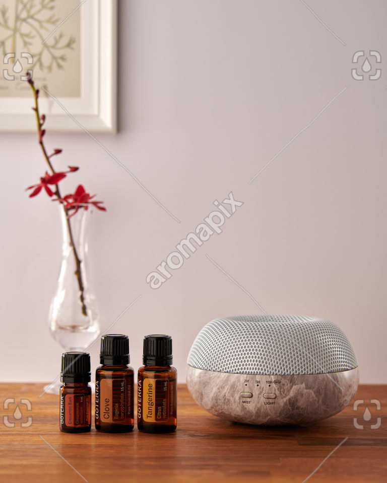 doTERRA Brevi Stone diffuser with Cinnamon, Clove and Tangerine