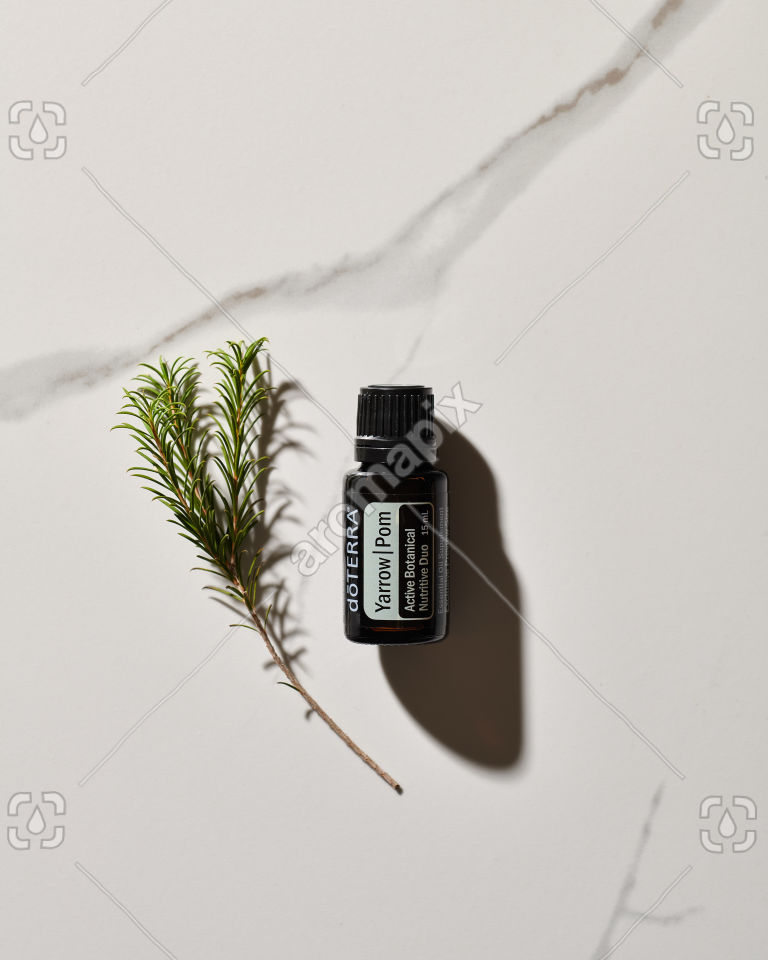 doTERRA Yarrow Pom essential oil blend and plant stem in sunlight