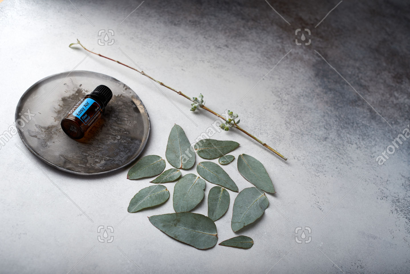 doTERRA Easy Air and eucalyptus leaves on white concrete