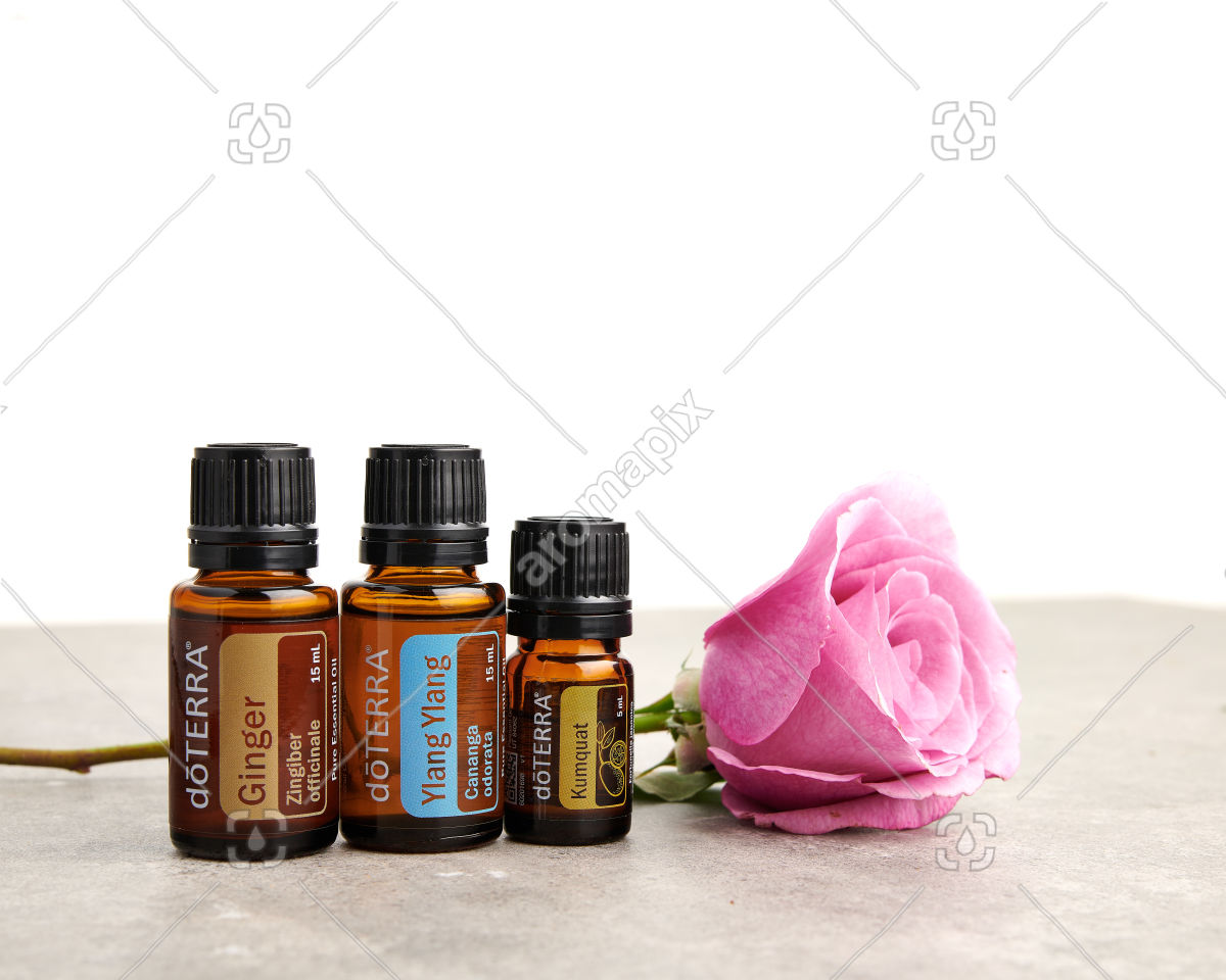 doTERRA Ginger, Ylang Ylang and Kumquat with a rose on a bench