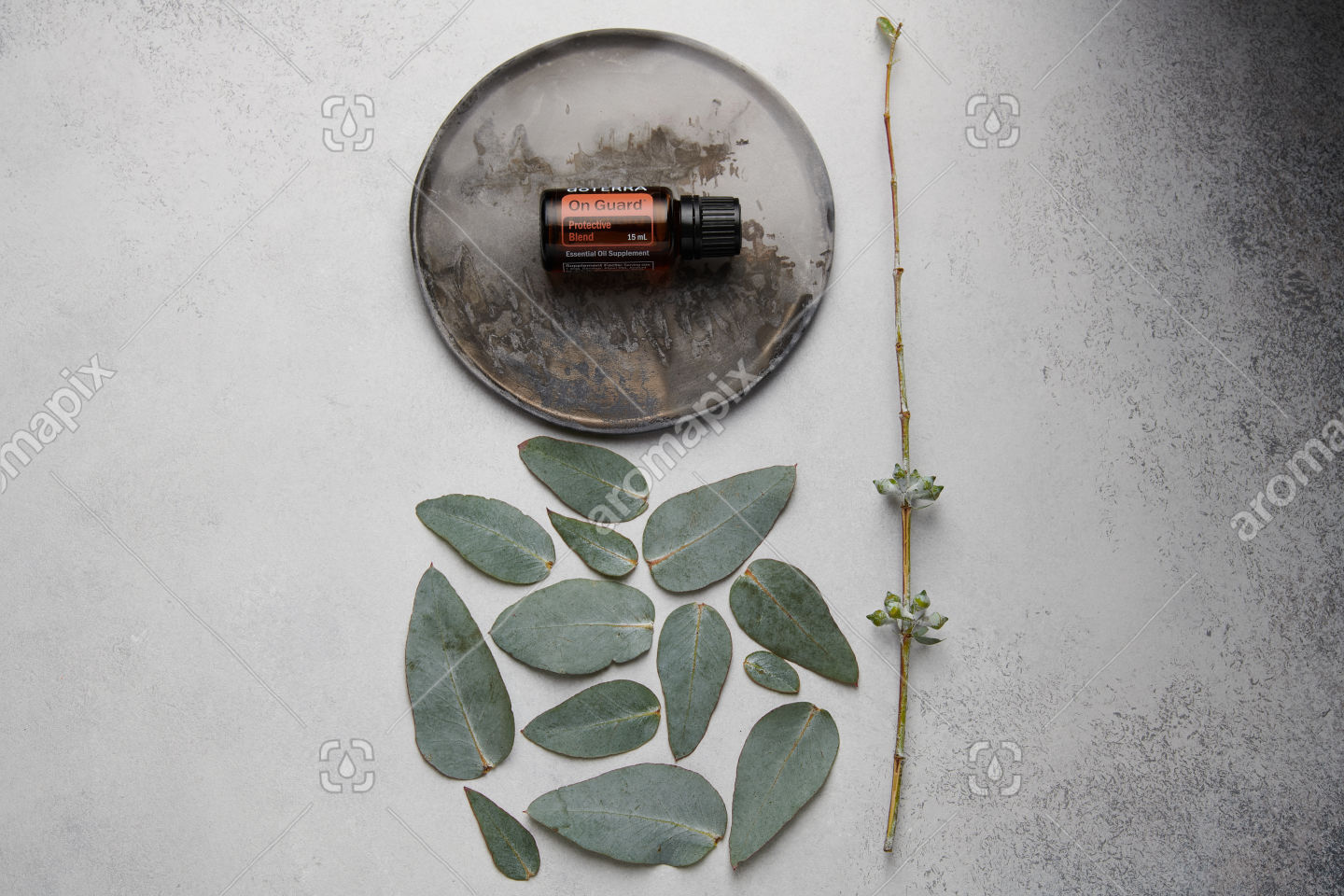 doTERRA On Guard and eucalyptus leaves on white concrete