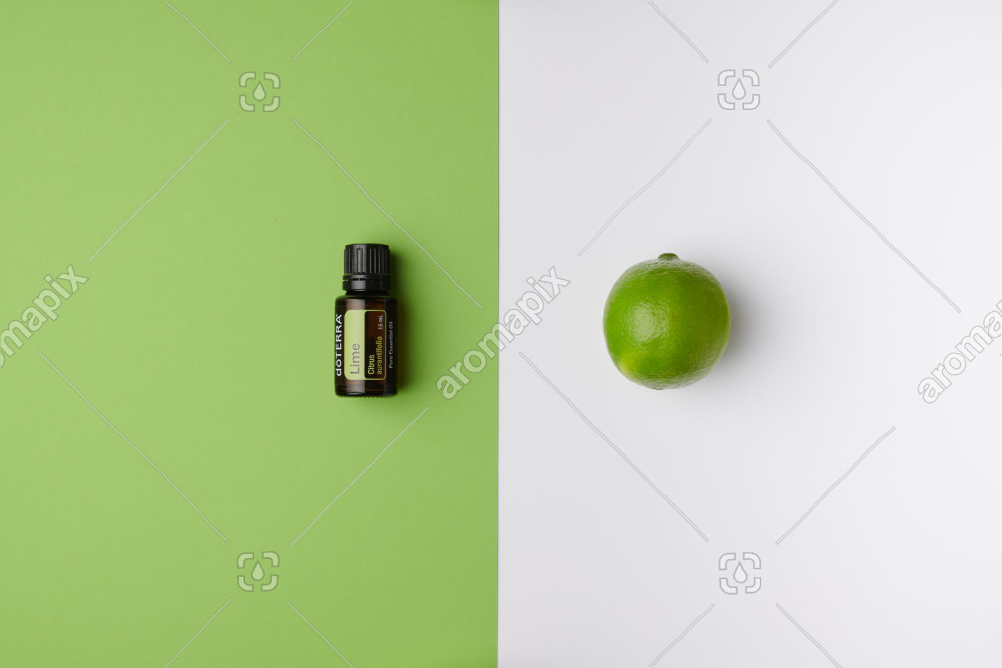doTERRA Lime product and fruit on green and white background