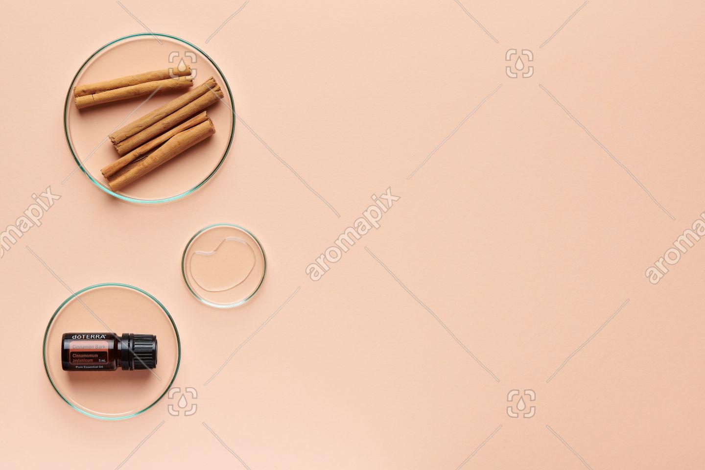 doTERRA Cinnamon with cinnamon bark on pale orange