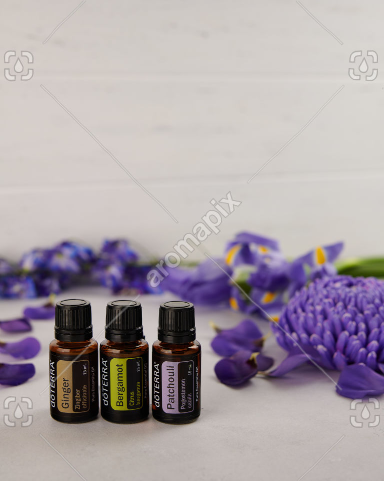 doTERRA Ginger, Bergamot, Patchouli with scattered purple flowers.
