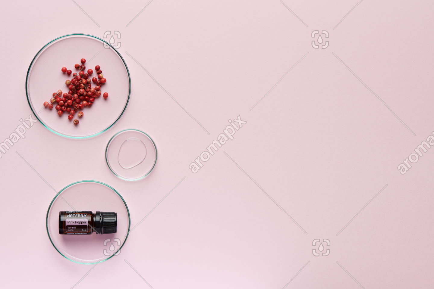 doTERRA Pink Pepper with pink peppercorns on pale pink