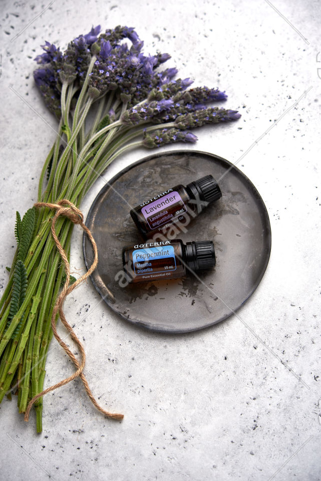 doTERRA Lavender and Peppermint with lavender flowers on white