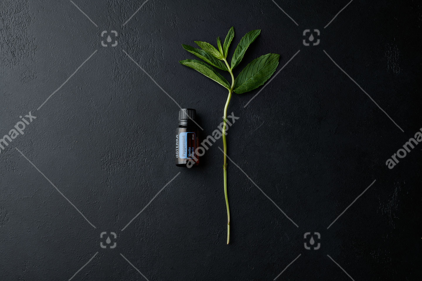 doTERRA Peppermint with a mint branch on black