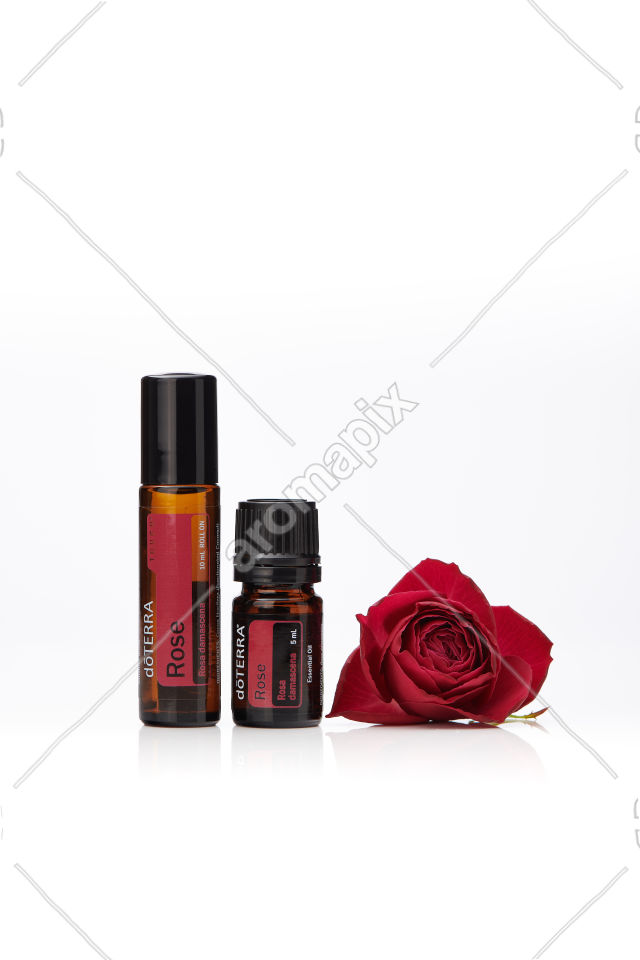 doTERRA Rose Touch and Rose on white