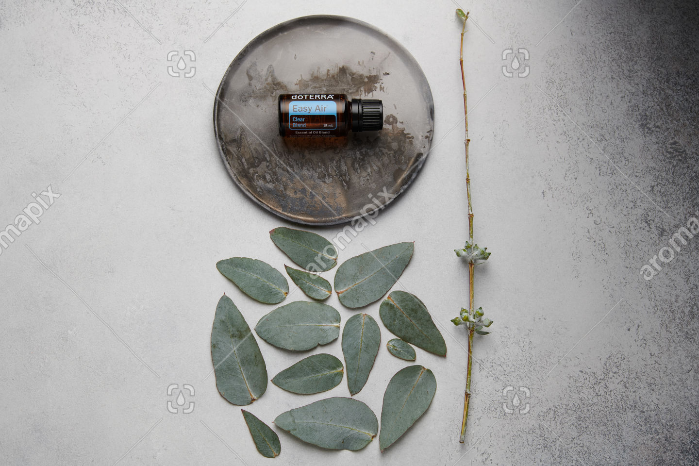 doTERRA Easy Air and eucalyptus leaves on white concrete