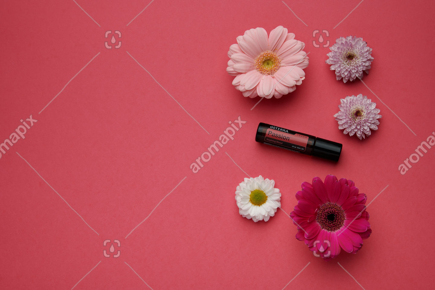 doTERRA Passion Touch with flowers on pink
